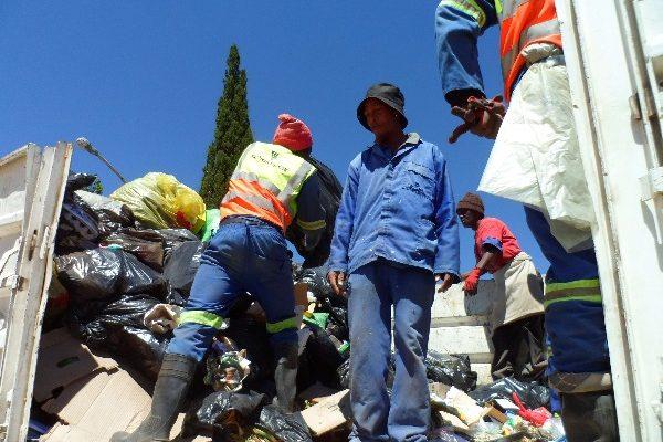 Fichardtpark garbage removal (12)