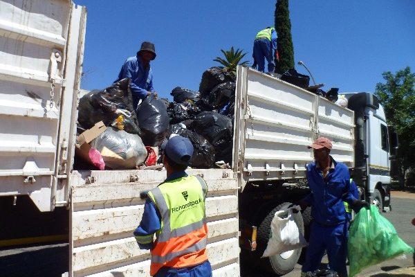 Fichardtpark garbage removal (4)