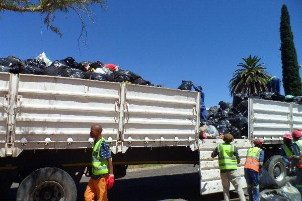 Fichardtpark garbage removal (6)