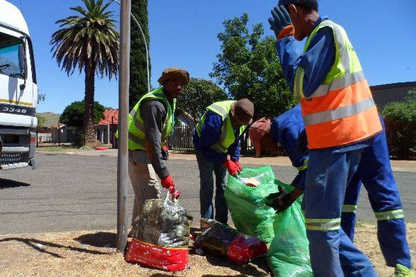 Fichardtpark garbage removal (7)
