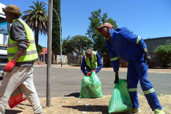 Fichardtpark garbage removal (8)